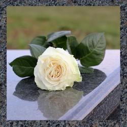 UA Ритуальные услуги Похоронные Салоны Магазины Службы Агентства Бюро ритуальных услуг Организация и проведение захоронений
