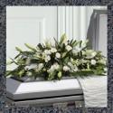 Кропивницкий Ритуальные услуги Похоронные Бюро Агентства Службы ритуальных услуг в Кировоградськой области