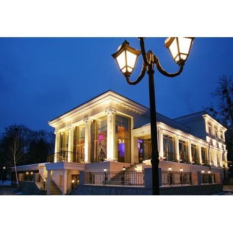Київ Вуличне та паркове освітлення ROSA