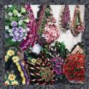 Миколаїв  Ритуальні послуги Організація і проведення поховань в Миколаївській області