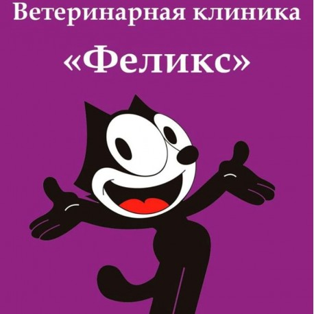 Клініка для тварин Фелікс Київ