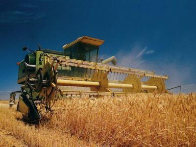 Вирощування зернових та технічних культур