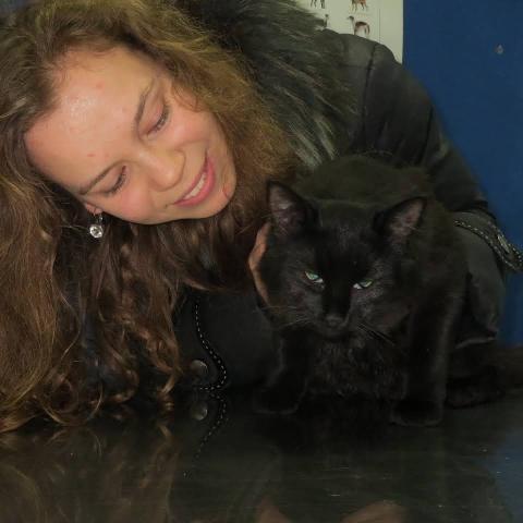 Ветеринарна клініка «Леопольд» Київ